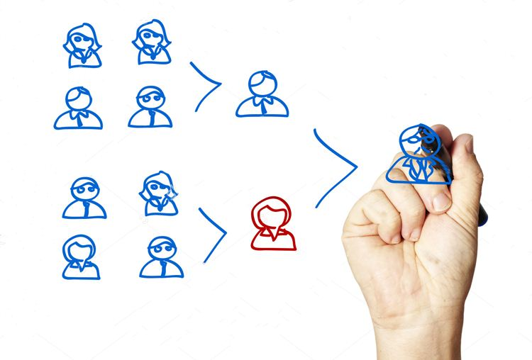 Doer, Executor & Performer (3): Peran Organisasi
