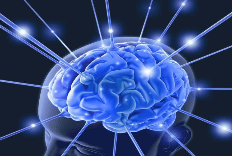 Pembuatan DA dan Kapasitas Otak