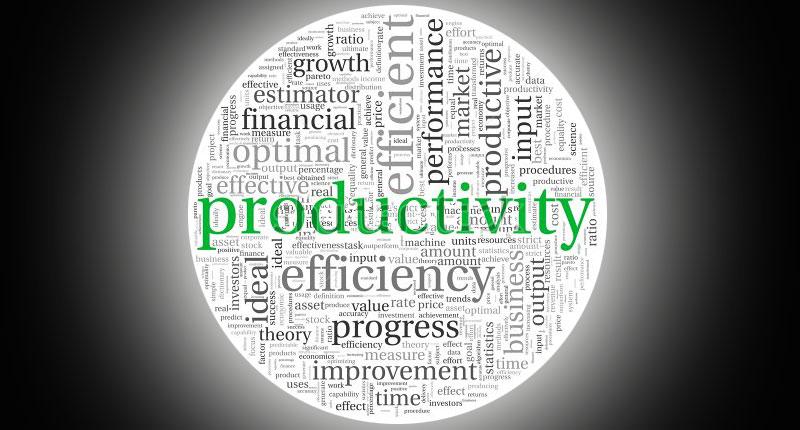 Memperluas Makna Produktivitas